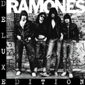 Ramones - Now I Wanna Sniff Some Glue [Demo Version]