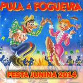 Festa Junina 2014 (Pula a Fogueira)