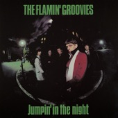 Flamin' Groovies - In the U.S.A.