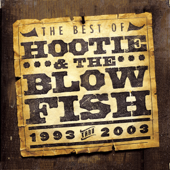 The Best of Hootie & The Blowfish (1993-2003)