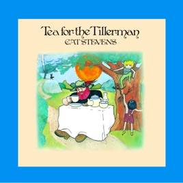 Image result for tea for the tillerman