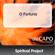 O Fortuna - Spiritual Project