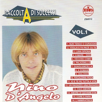Raccolta di successi, Vol. 1 (The Best of Nino D'Angelo Collection) - Nino D'Angelo