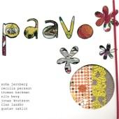 Paavo - Sandpaper