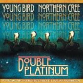 Young Bird - Beginner's Luck
