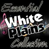 White Plains - My Baby Loves Lovin'