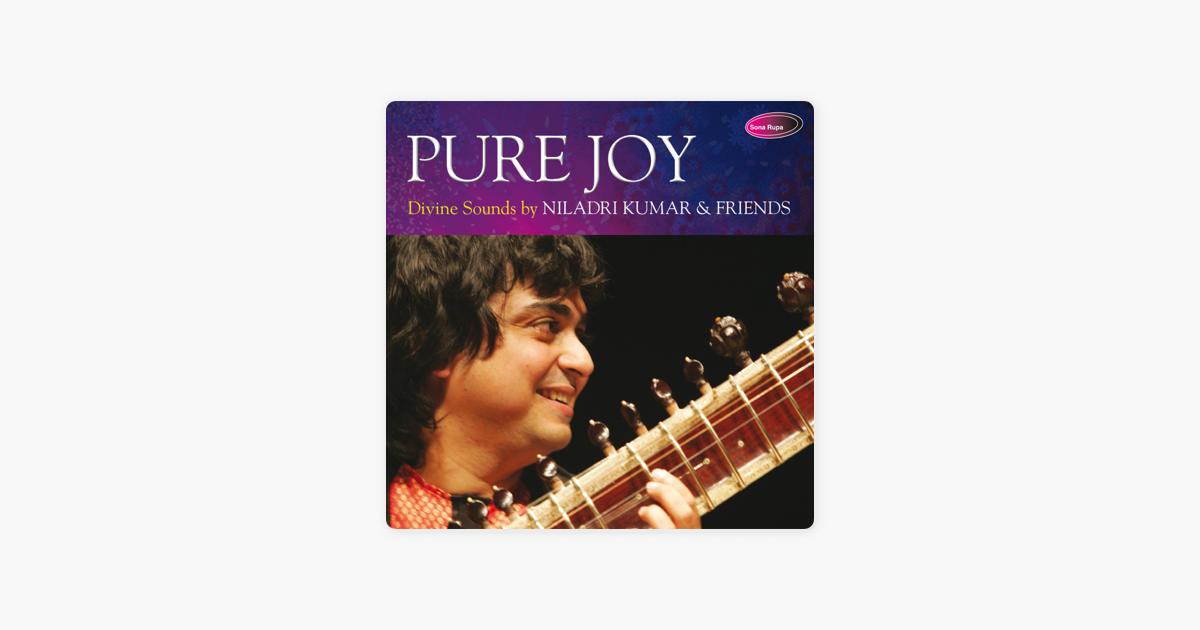 pure Joy 2 (raag Jhinjhoti) By Niladri Kumar On Apple Music