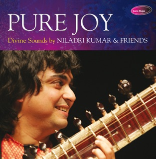 Pure Joy – Niladri Kumar
