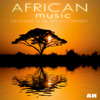 african music - Tribal: African Orchestra artwork