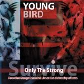 Young Bird - Big Poppa Pimpin