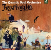 The Quantic Soul Orchestra - Father