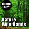 Nature Woodlands (Nature Sound With Music) - Nature Music