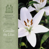 Mormon Tabernacle Choir, Orchestra At Temple Square & Craig Jessop - Consider the Lilies  artwork