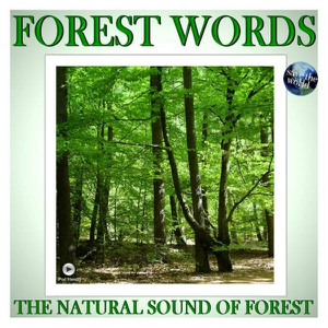 Forest Words - The Natural Sound of Forest