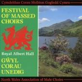 Corau Meibion Gogledd Cymru - Cwm Rhondda