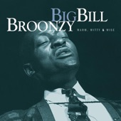 Big Bill Broonzy - Southern Flood Blues