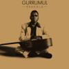 Gurrumul - Bayini artwork