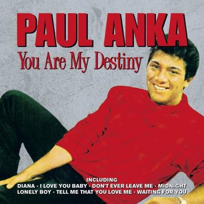 You Are My Destiny - Paul Anka