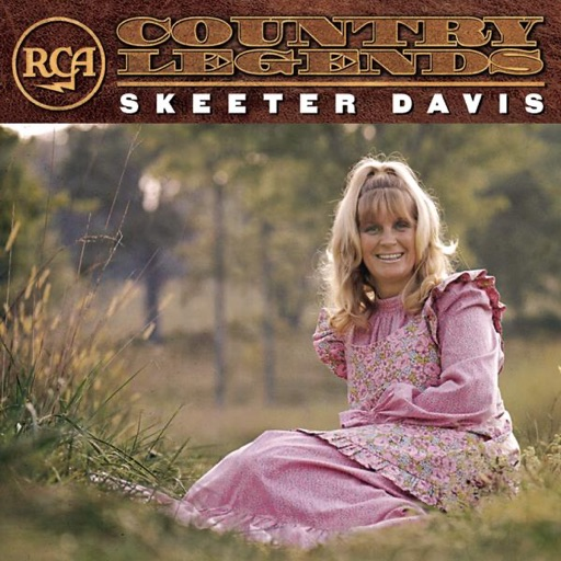 Art for There's A Fool Born Every Minute by Skeeter Davis