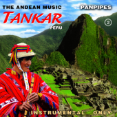 The Andean Music: Panpipes - Instrumental Vol. 2