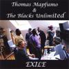 Thomas Mapfumo & The Blacks Unlimited - Ndangariro artwork