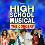 We're All In This Together (Live) - The Cast of High School Musical