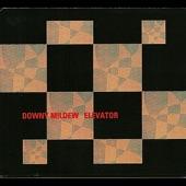 Downy Mildew - Cool Nights