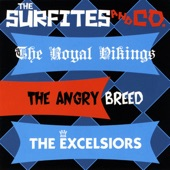 The Surfites - The Picador (The Excelsiors)
