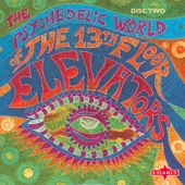 The 13th Floor Elevators - Pictures (Leave Your Body Behind) - Original
