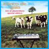 Live at Glastonbury - Banco de Gaia