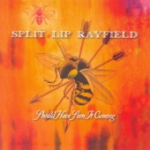 Split Lip Rayfield - Truth & Lies
