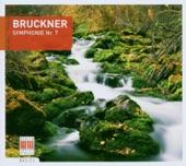 Rundfunk-Sinfonieorchester Berlin & Heinz Rögner - Symphony No. 7 in E Major: IV. Finale: Bewegt, doch nicht zu schnell