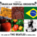 And I Love Her - Brazilian Tropical Orchestra