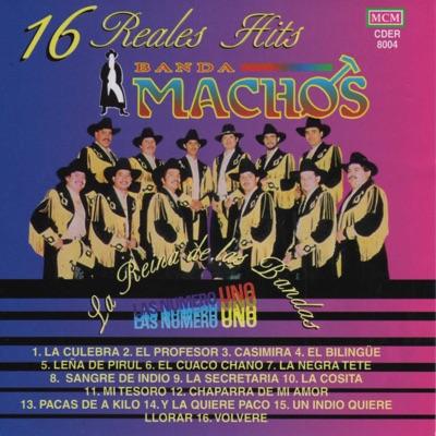 16 Reales Hits - Banda Machos