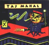 Taj Mahal - Tom & Sally Drake