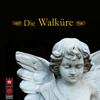 Die Walküre - The Bayreuth Festival Orchestra & Clemens Krauss