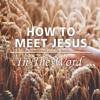 How to Meet Jesus in the Word - Joseph Prince