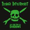 Teenage Bottlerocket - Skate or Die artwork