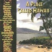 Country Comfort - Waimanalo Blues