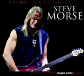 Steve Morse - Mood For A Day