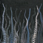 Pelican - Bliss In Concrete