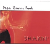 Papa Grows Funk - Rat a Tang Tang
