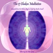 The 17 Chakra Meditation - Single