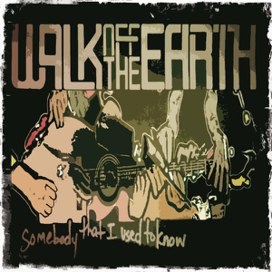 Walk Off the Earth - Somebody That I Used to Know