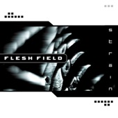 Flesh Field - Reflect the Enemy