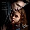 Разные артисты - Twilight (Original Motion Picture Soundtrack) обложка