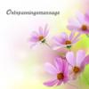 Ontspanningsmassage: Muziek voor Meditatie, Rest, Ontspannen, Ontspanning, Massage en Slapen - Ontspanningsmassage Muziek Club