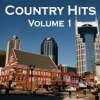 Country Hits (Volume 1)