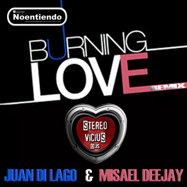 ‎Burning Love Remix - Single by Stereo Vicius DJs