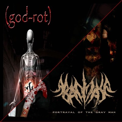 Potrayal of the Gray Man / The Decayed State - Abacinate
